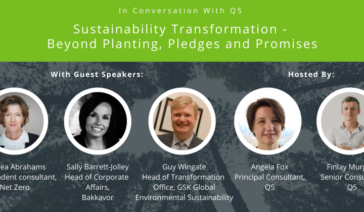 Sustainability Transformation – Beyond planting, pledges and promises