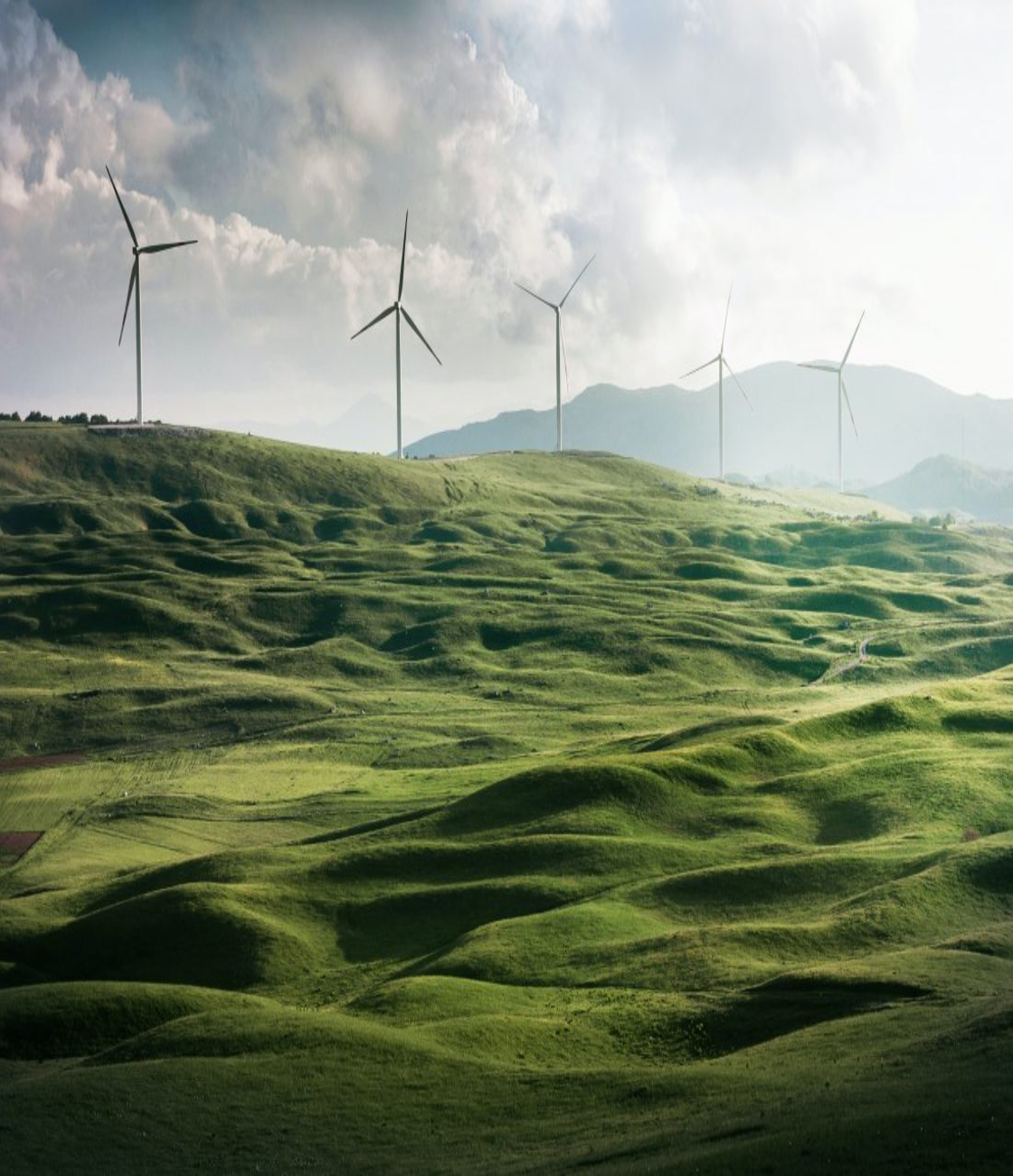 Energy Transition: Strategy articulation and alignment