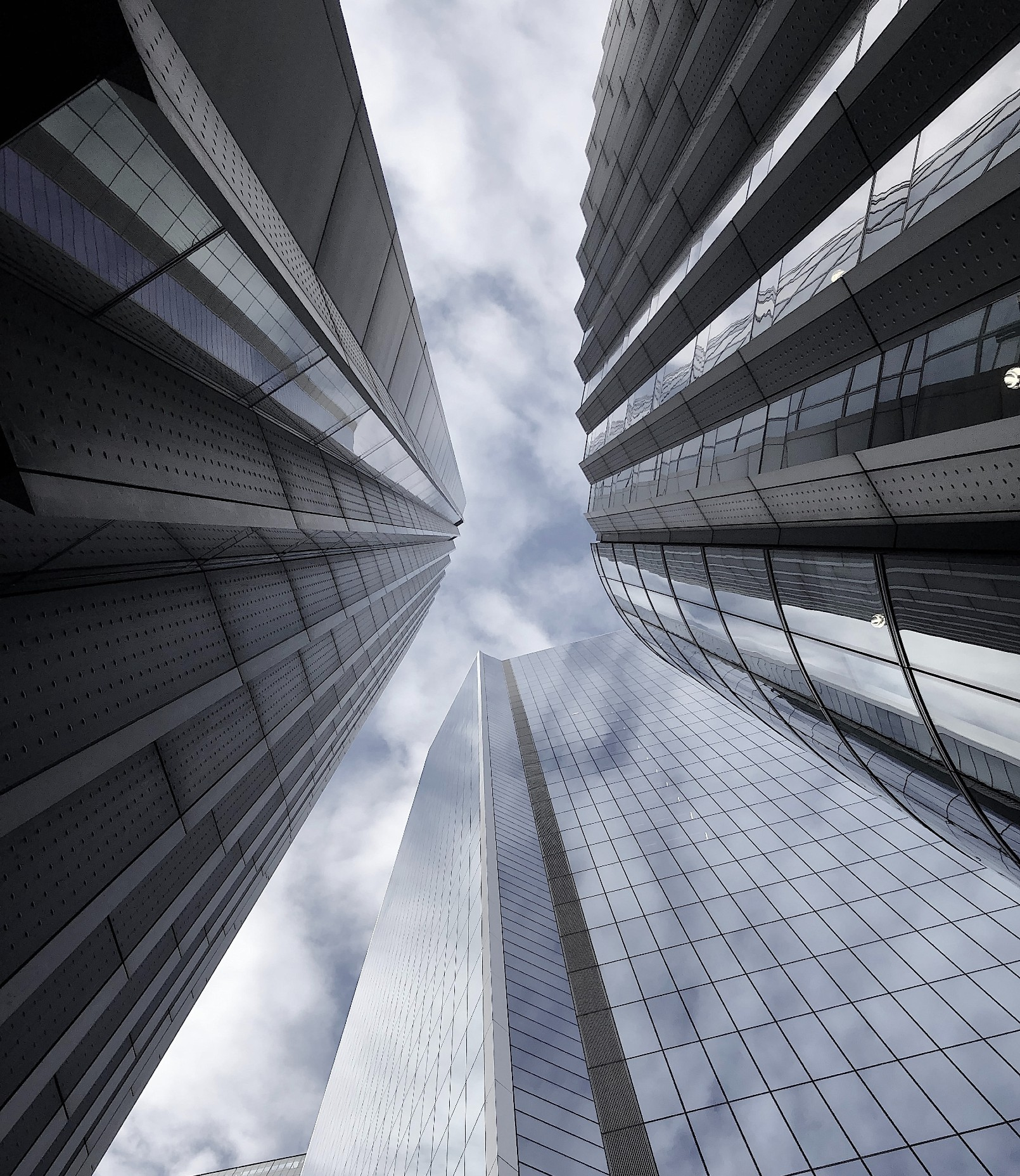 Large Banking Group – Future-proofing the Risk division's capabilities